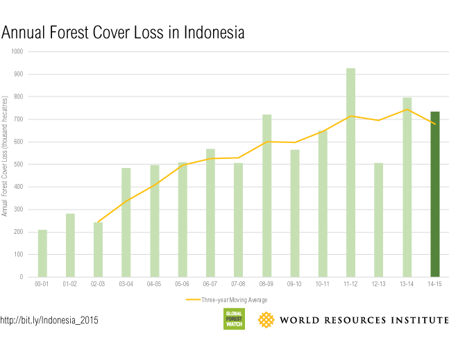 Infografis Kehilangan tutupan hutan Indonesia | foto : wri-indonesia.org