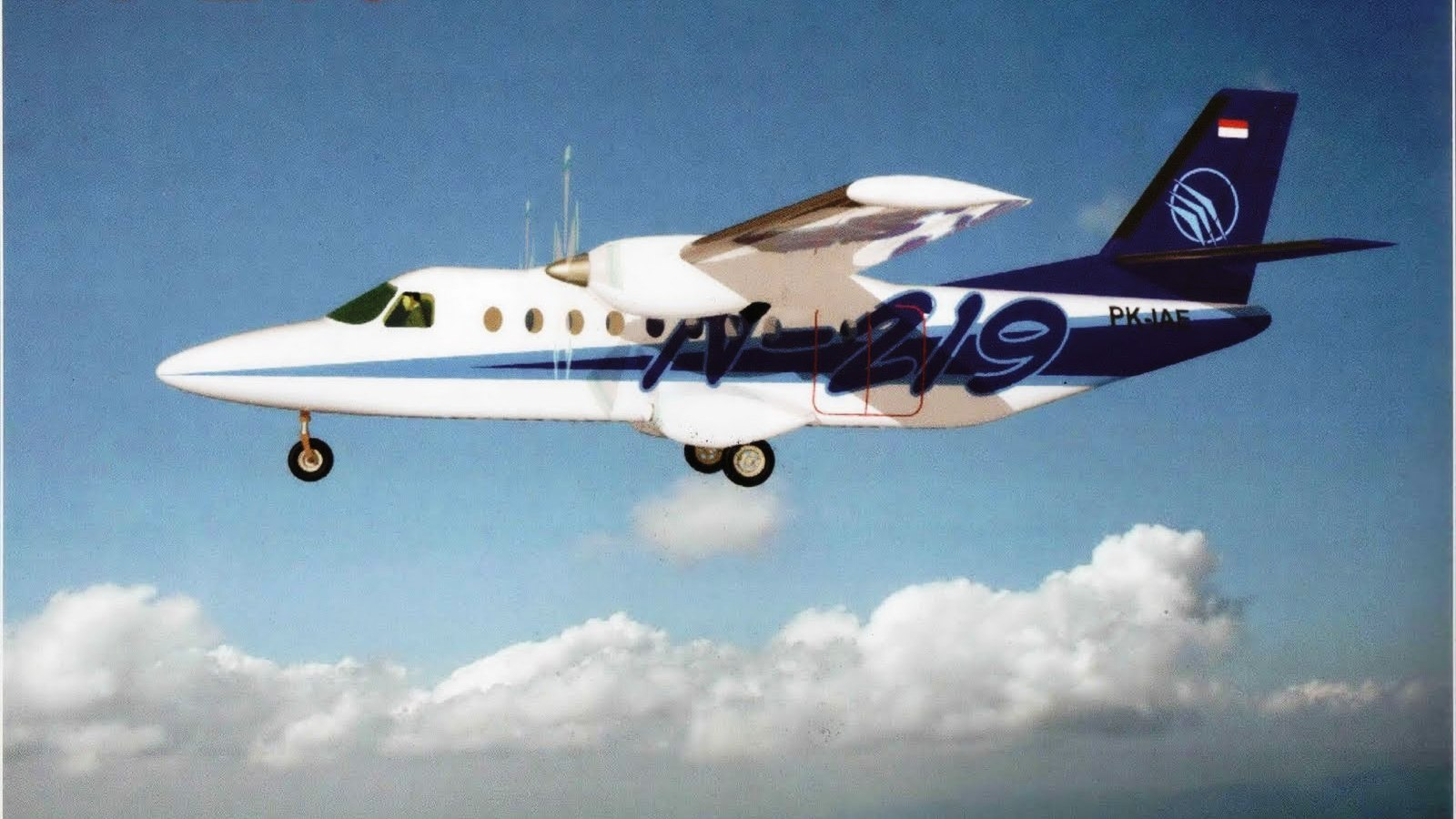 Pesawat N219 dirancang untuk terbang di daerah terpencil yang bisa mendarat di landasan tanah, berumput, atau berkerikil, dengan panjang landasan 600 meter