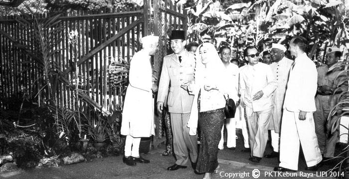 Presiden Soekarno mengunjungi kebun anggrek yang ada di Kebun Raya Bogor
