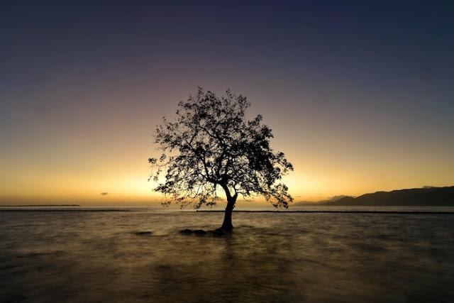 Garis keemasan di sepanjang horizon Pantai Mali, Pulau Alor (Image: Marischka Prudence)
