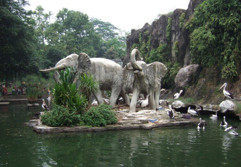 Taman Margasatwa Ragunan l Sumber: tamannirvana