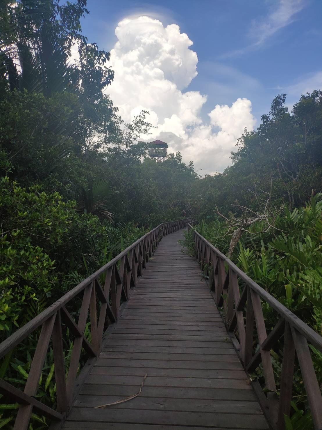 Si Hidung Panjang Penghuni Pulau Bawah Jembatan