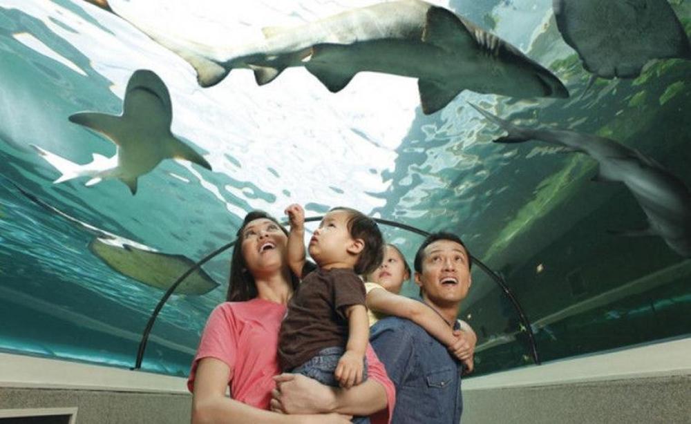 tempat wisata dunia ramah anak di dunia yang menarik dan populer
