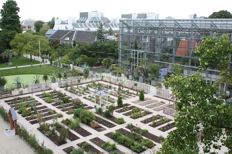 Hortus Botanicus di Leiden, Belanda (Foto: visitleiden.nl)