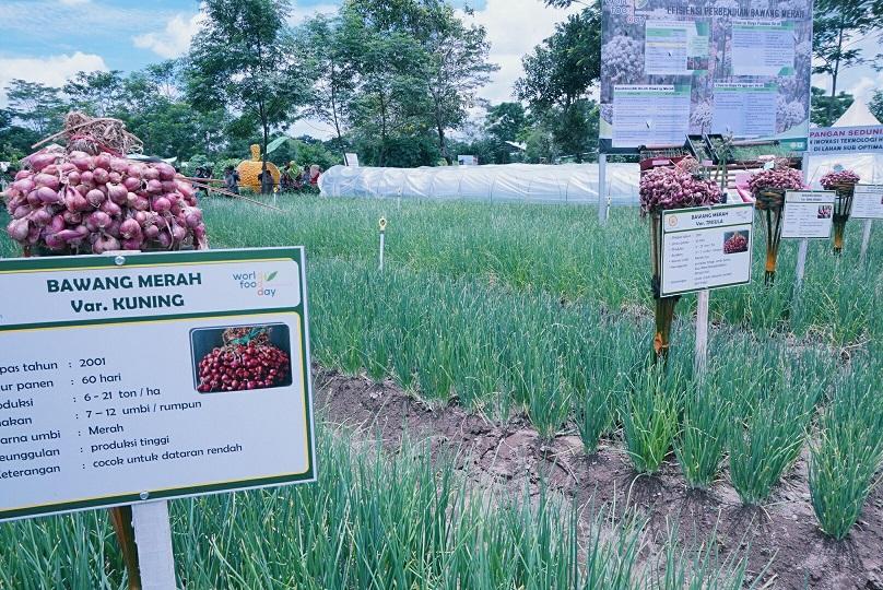 Kebun Bawang di area pameran HPS ke-36 (Foto: Bagus DR/GNFI)
