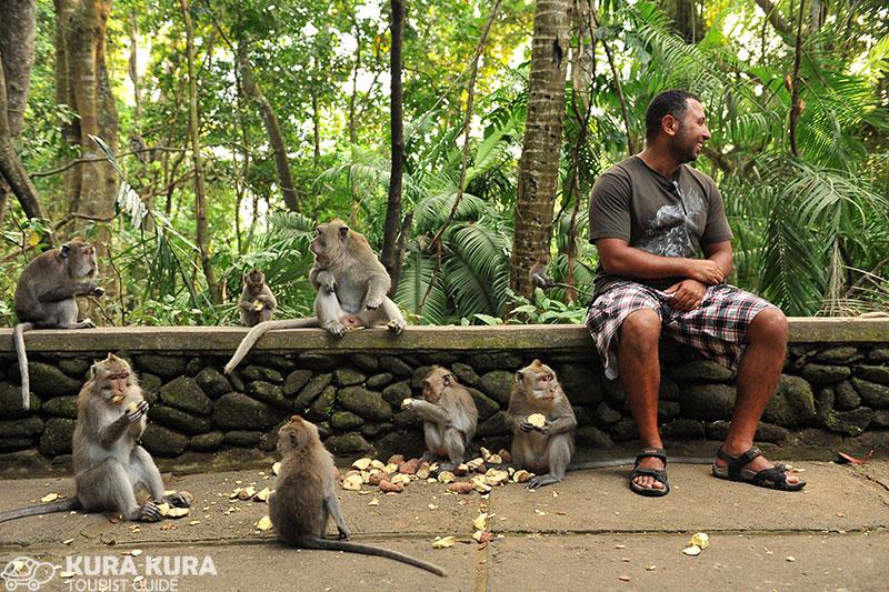 Monkey Forest Ubud Bali, Indonesia