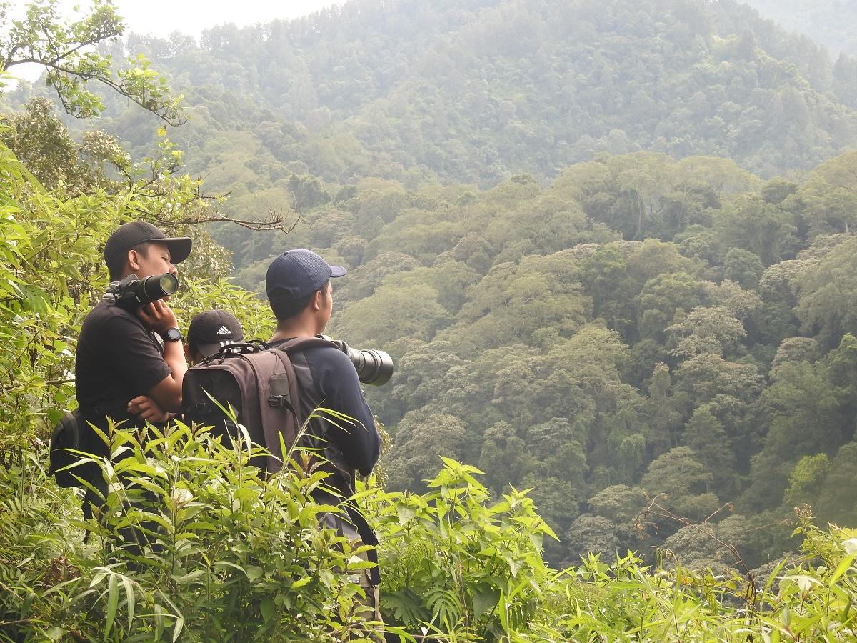 Monitoring Elang Jawa TNBTS | Foto : Iqbal Nur Ardiansyah
