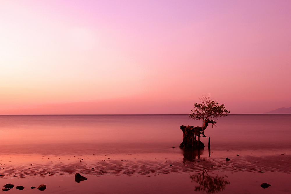 Sunset di Pantai Wailiti Maumere © Boy Torkis Simarmata