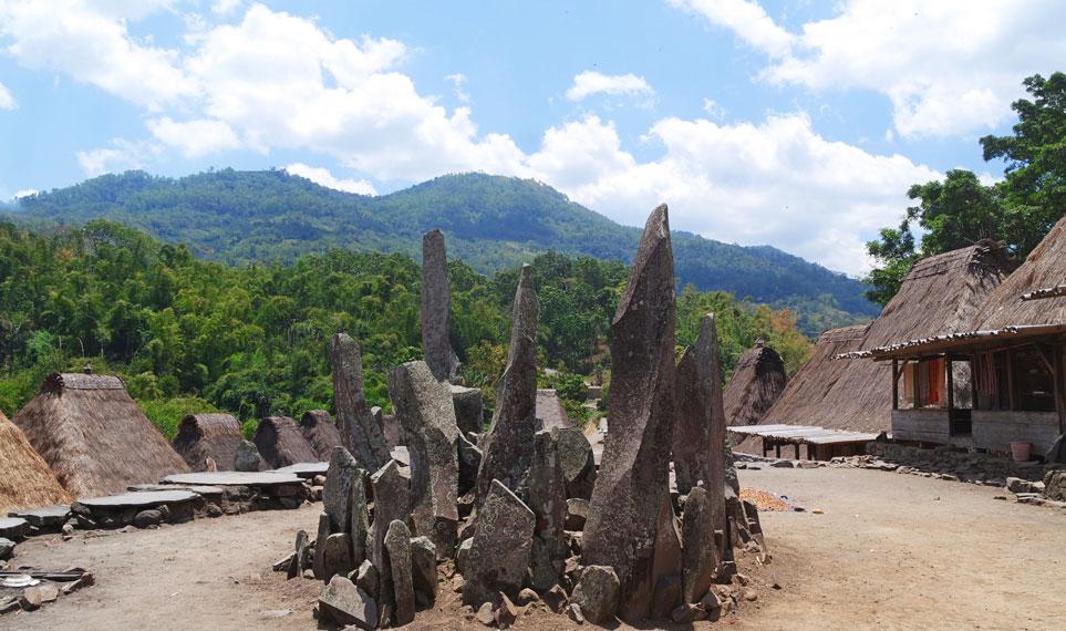 Ditengah-tengah kampung atau lapangan terdapat beberapa bangunan yang mereka menyebutnya bhaga dan ngadhu | Foto: Indonesiakaya