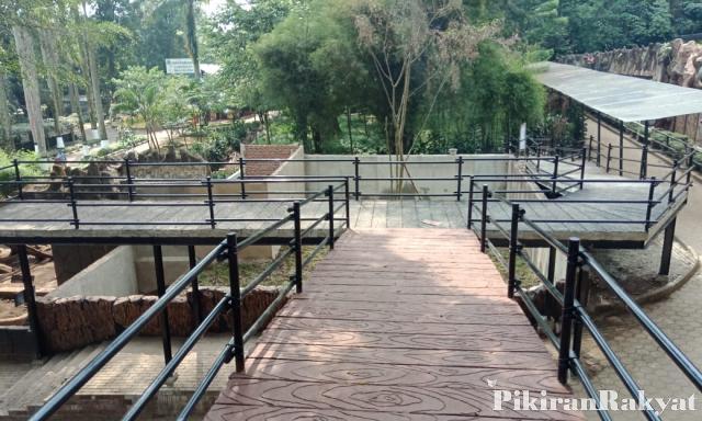 Skywalk Macan Tutul di Bandung Zoo | Foto: Pikiran Rakyat