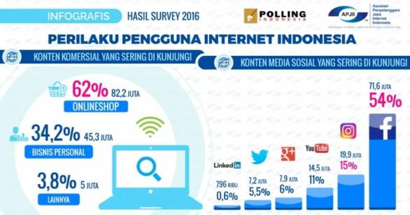 Pelaku pengguna internet berdasarkan survei
