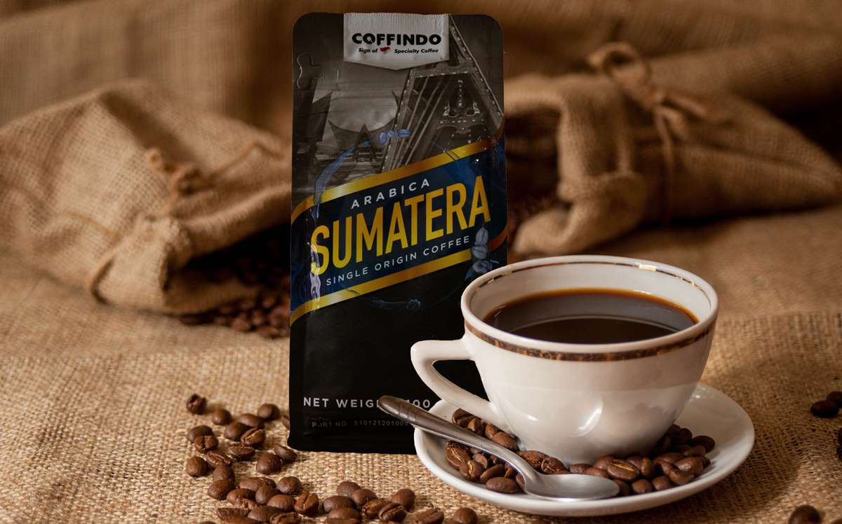 Ilustrasi kopi Gayo Sumatera | Foto: coffindo.id
