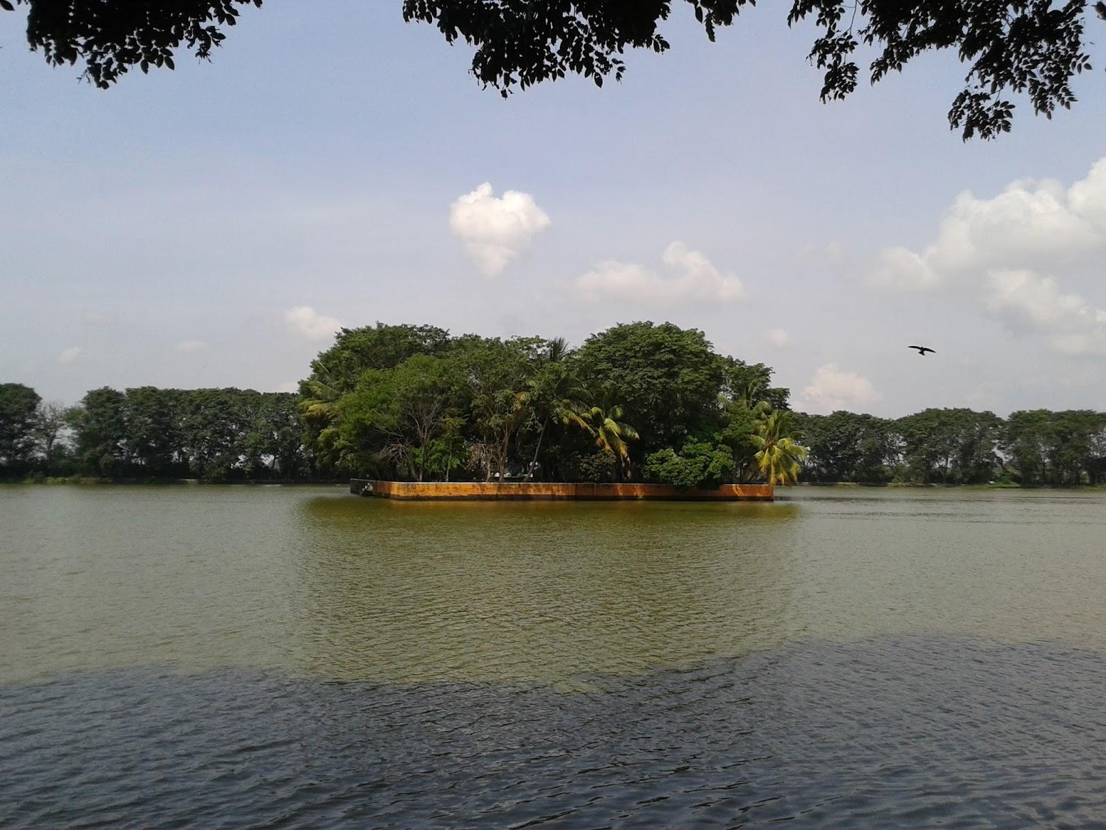 Potret Danau Tasikardi Banten | Foto: ksmtour.com