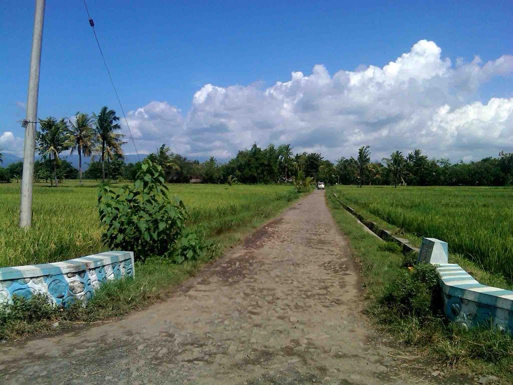 Jalan Rusak di Desa