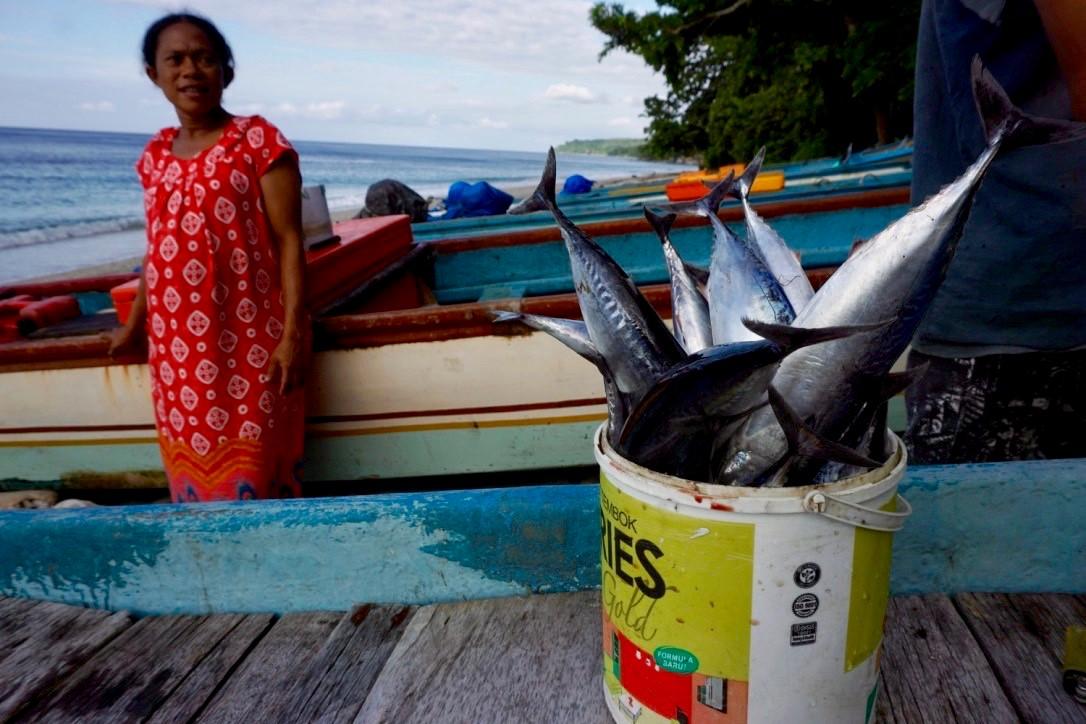 Hasil tangkapan nelayan kecil di Pulau Buru, Maluku, berupa ikan tuna.| Anton Muhajir | Mongabay.co.id