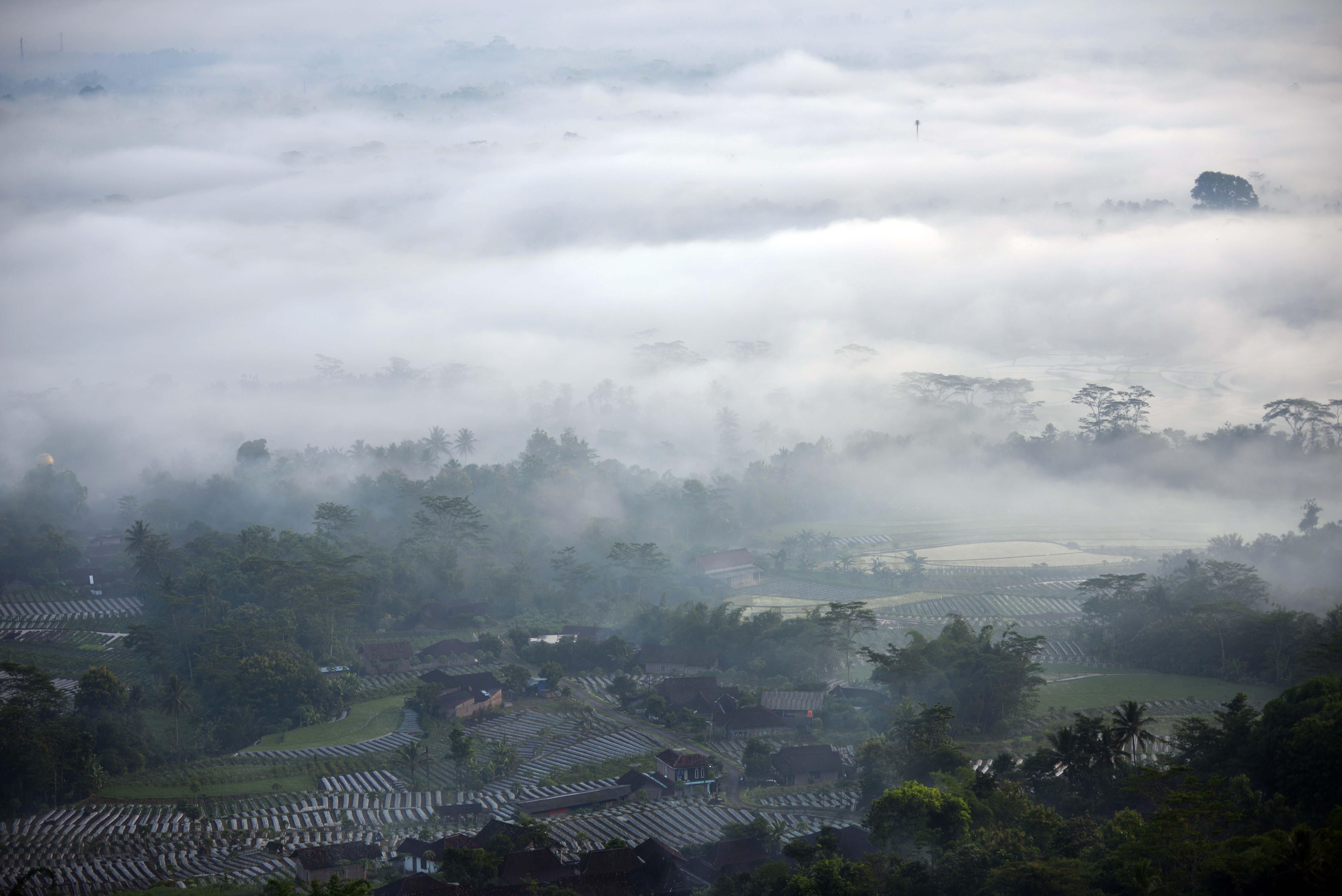 Perkampungan dan Ladang Pertanian