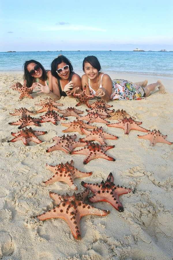 Pasir Pantai dan Bintang Laut di Pulau Pasir (Youtube.com)