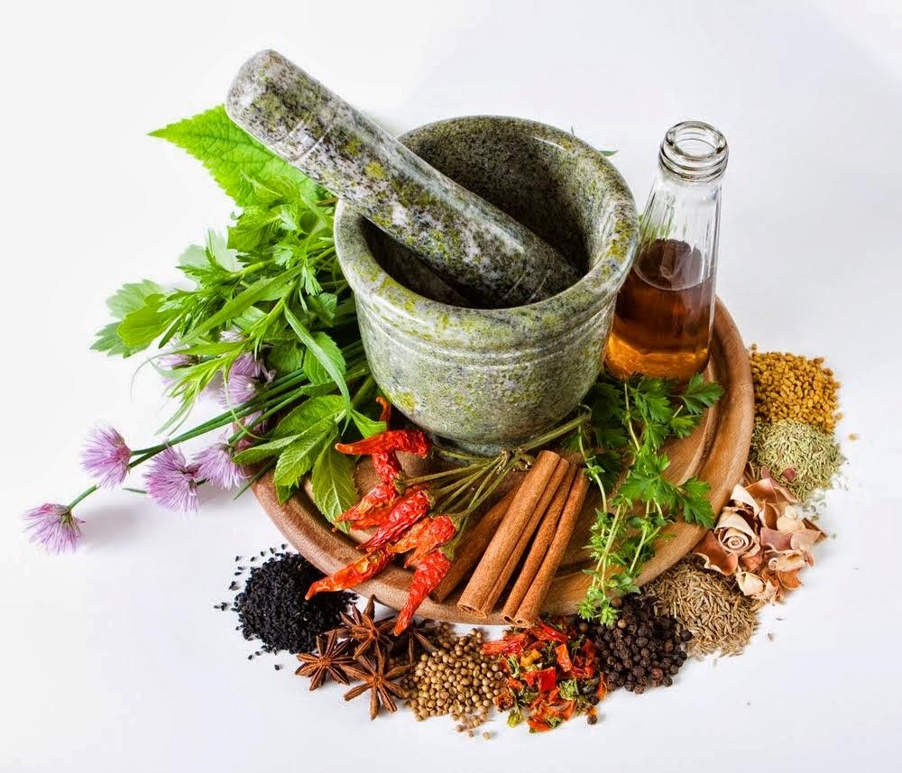 (Tanaman herbal/bali-green.blogspot.com)