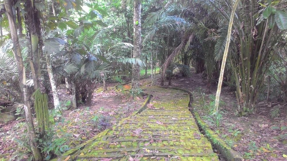 Jalan menuju Tugu dan Makam