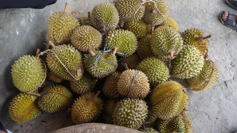 Pesta Durian! © Fitria Dwi S