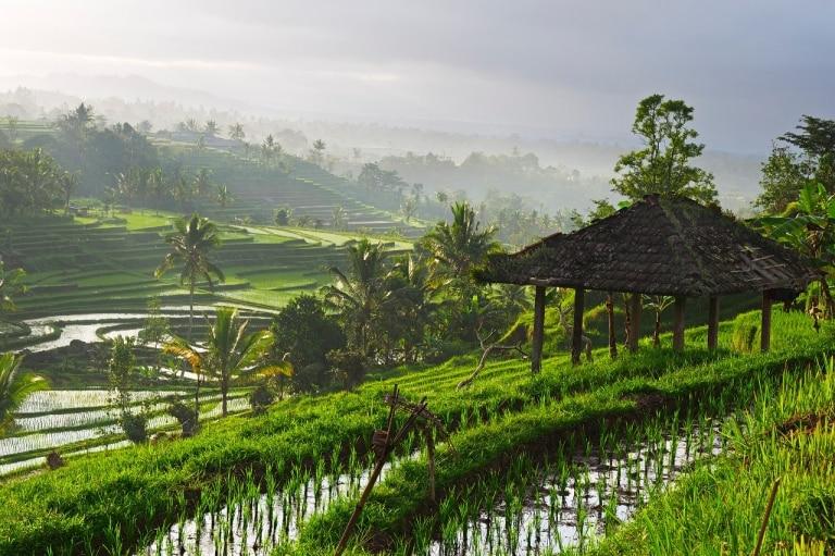 Bali. Foto: Qantas.com