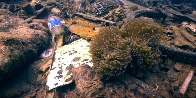 Botol plastik ditemukan di dasar lautan. Foto: Divers Clean Action/BBC