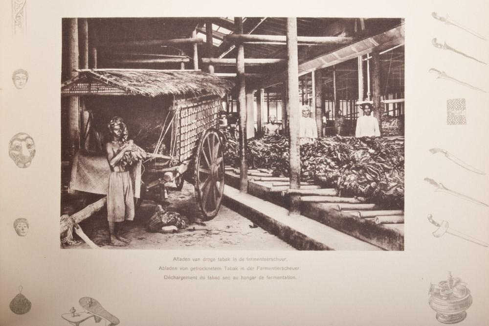 Proses Pengolahan Tembakau Kering di Gudang LMOD (Sumber : http://www.zwiggelaarauctions.nl/files/a_files/29016.jpg)