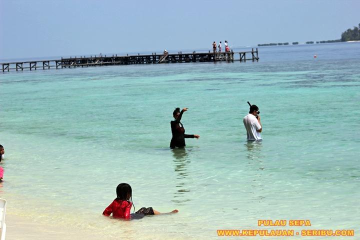 Berenang Dan Senorkeling Di Pantai Pulau Sepa Resort