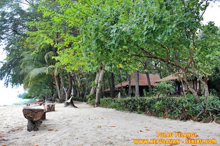 Cottage Di Dekat Pantai View Laut Pulau Pelangi Resort
