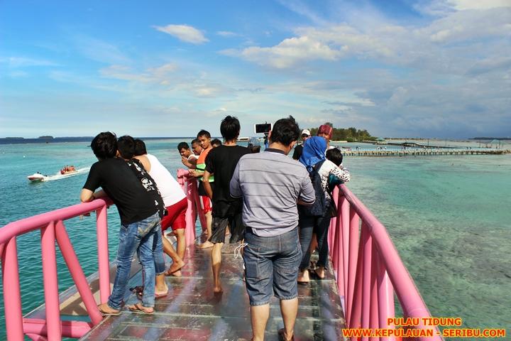 Jembatan Cinta Pulau Tidung Wisata Kepulauan Seribu