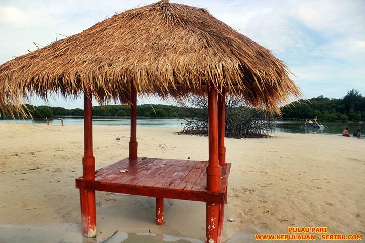 Pantai Pasir Perawan Pulau Pari Wisata Kepulauan Seribu Jakarta