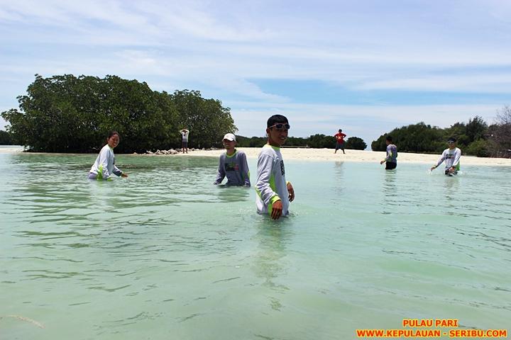 Pantai Pasir Perawan Dan Pohon Mangrove