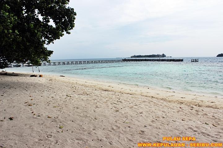 Pantai PAsir Putih Pulau Sepa Resort Wisata Pulau Seribu