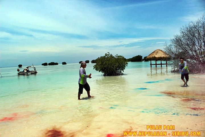 Wisata Pantai Pasir Perawan Di Pulau Pari Kepulauan Seribu jakarta