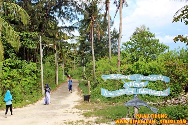 Pulau Tidung Kecil Wilayah Konservasi Di Pulau Tidung