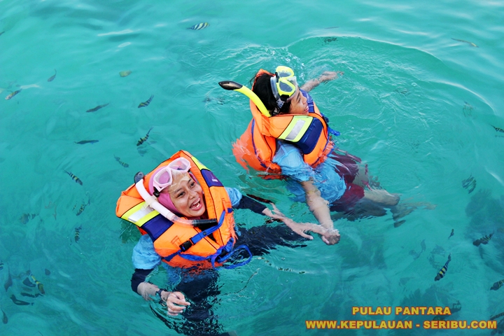 Snorkeling Di Pulau Pantara Resort Wisata Kepulauan Seribu Jakarta