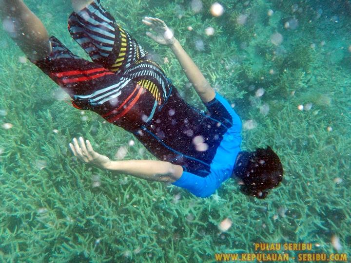 Snorkeling Di Pulau Seribu Wisata Jakarta Di Kepulauan Seribu