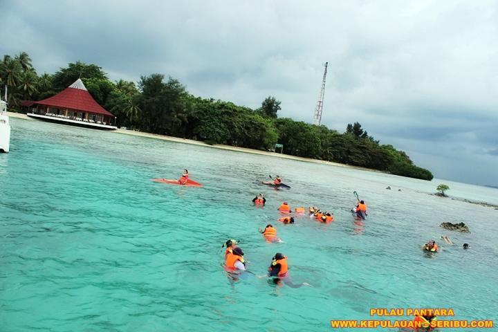 Snorkeling di Pulau Pantara Wisata Pulau Seribu Resort