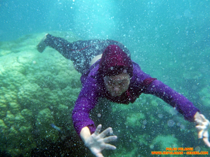 Snorkeling Pulau Pelangi Resort Jakarta