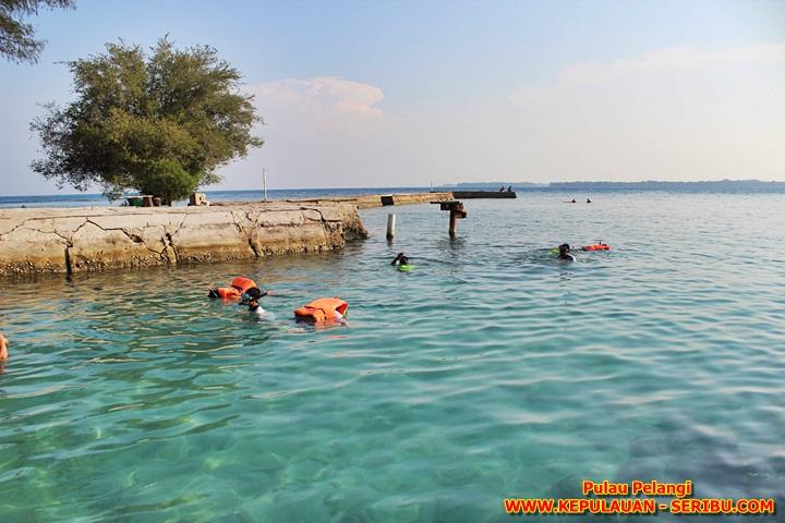 Snorkeling di Pulau Pelangi