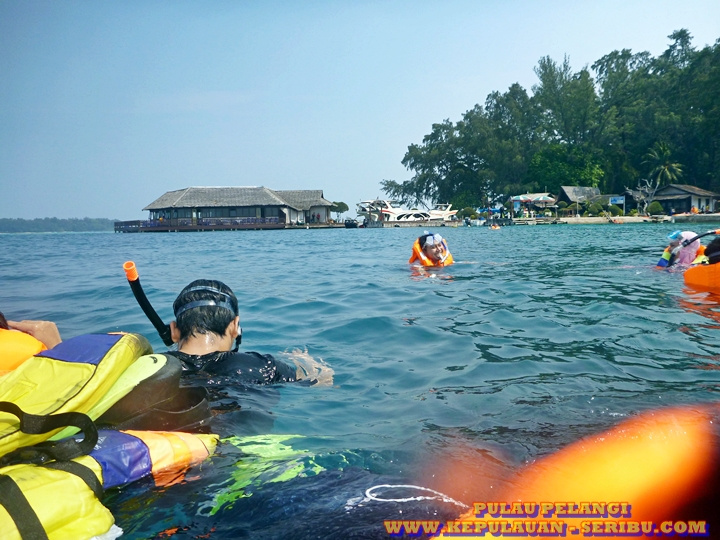 Snorkeling Di Pulau Pelangi Wisata Kepulauan Seribu Jakarta
