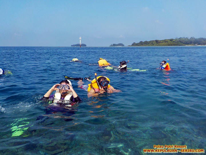 Snorkeling Pulau Putri Resort