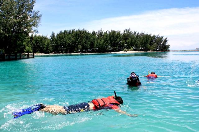 Snorkeling Di Pulau Pramuka Wisata Kepulauan Seribu Jakarta