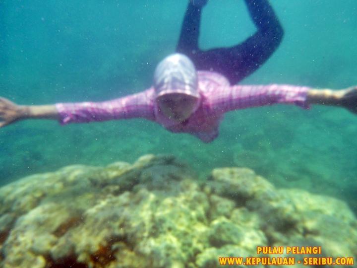 Snorkeling Pulau Pelangi Wisata Kepulauan Seribu Jakarta