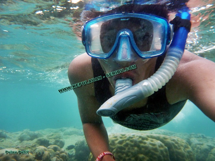 Snorkeling Pulau Seribu menikmati keindahan terumbu karang Kepulauan Seribu.