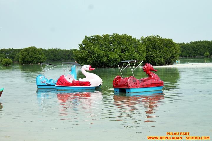 Pulau Pari Wisata Pulau Seribu Jakarta