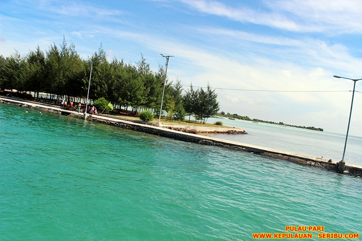 Pulau Pari Wisata Pulau Seribu