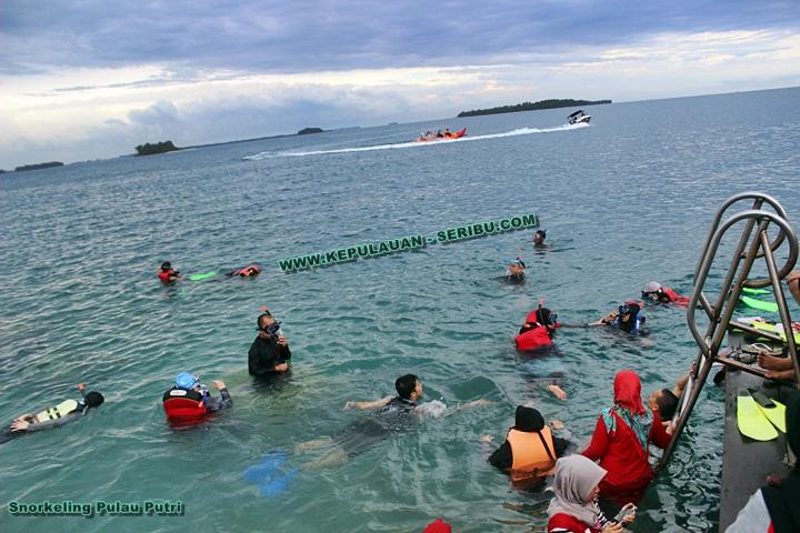 Snorkeling di Pulau Putri Resort Pulau Seribu