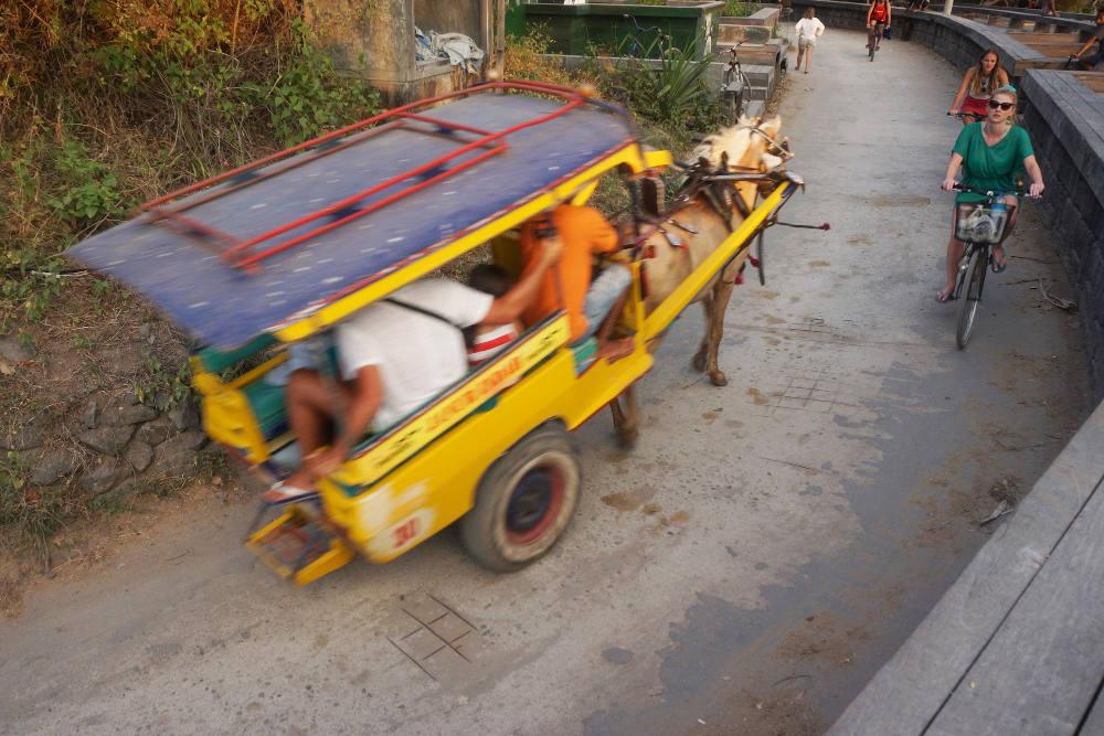 Cidomo, Delman khas Lombok