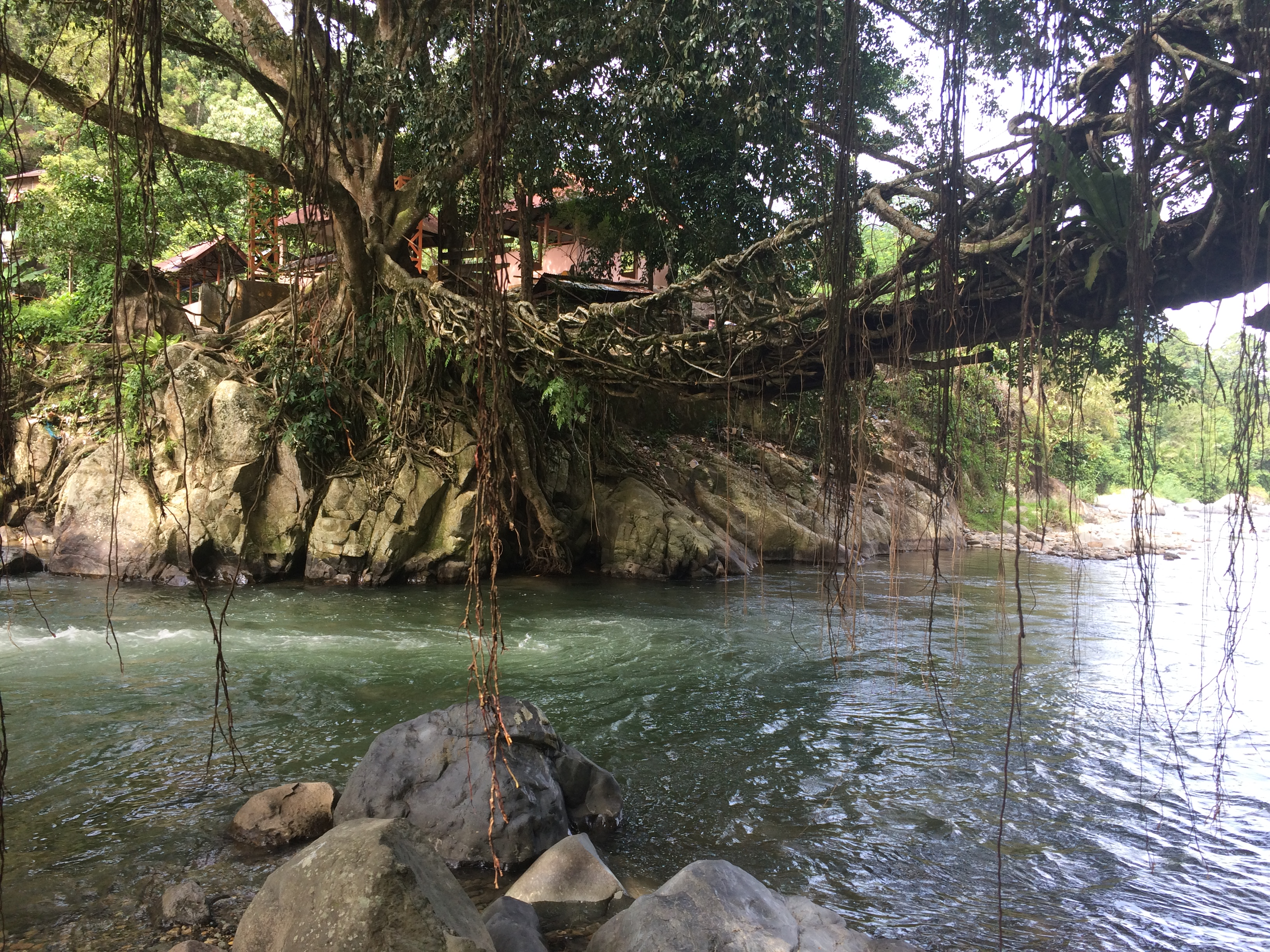Sungai Batang Bayang yang jernih dan segar